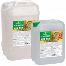 АНТИПЛЕСЕНЬ PROSEPT 5,0 литр.  Антисептик универсальный против грибка и плесени